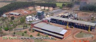 Usina de Açúcar e Alcool a venda em São Paulo - Oportunidade p/ investidores!