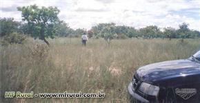 Fazenda 1200 has - Buritizeiro-MG