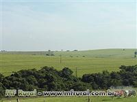 Fazenda na Regiao de Marilia-SP com 251  hectares