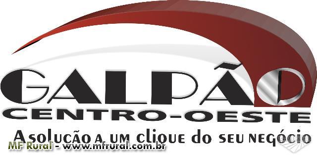 SEMENTES BRACHIARIA BRIZANTHA CV. BRS PIATÃ - O BRAQUIARÃO MELHORADO - EMBRAPA