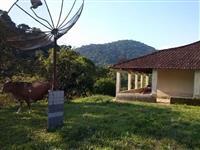 Fazenda em Miracatu SP, 100 Alq.2 ótima casas, excelente investimento!!!