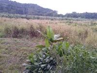 Sitio Juquiá Sp c/ 3 Hectares,casa,barracão,represa,água,luz,2km Br116 Escritura