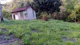 Sitio 24 Hectares c/duas casas simples, muita água ,terra boa, 3 km do asfalto