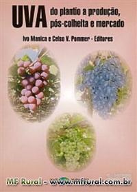 Livro UVA: do Plantio a Produção, Pós-Colheita e Mercado