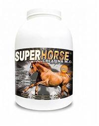Super Horse Creatina - Suplemento Mineral, Vitamínico, Aminoácidos para Equinos (Cavalos)