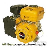 Motor Buffalo BFG 2.8cv  - Gasolina