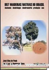 Livro Madeiras Nativas do Brasil. Anatomia - Dendrologia - Dendrometria - Produção - Uso