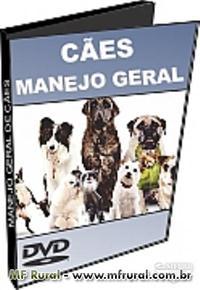 DVD Manejo Geral de Cães