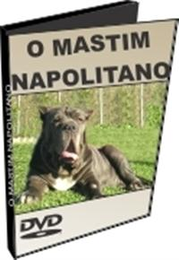 O Mastim Napolitano - DVD