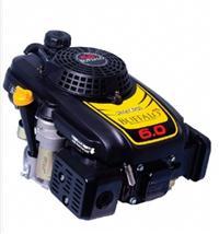 Motor BFGE 6,0 CV - Buffalo - Gasolina