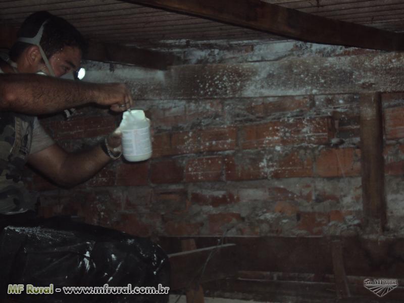 Dracun vampiricida veneno para morcegos, mais de 05 anos de proteção!