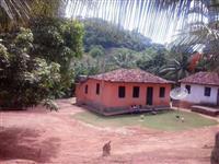 Sitio com 2 Casas Rusticas e Plantacoes de Teca e de Coco Anao Verde