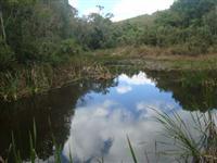 Sitio São Gonçalo do Sapucai MG