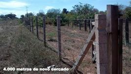 Fazenda em Monte Alegre do Piaui - PI com 2700 hectares
