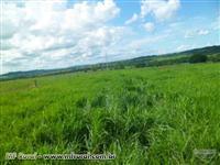 Fazenda em Pontalina GO