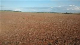 Vendo fazenda para plantio em Goiás