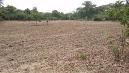 Fazenda no par� aceita troca vendo urgente
