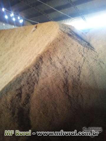 Casca de Arroz Prensada e Natural á Granel