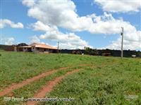 Fazenda 1670 ha proxima Patos de Minas, Eucalipto, Gado e Cana