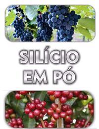 SILÍCIO BUGRAN EM PÓ FUNGICIDA ORGÂNICO (94,60% de Silício) FRETE GRÀTIS