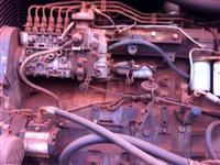 Motor, termostato, resistencia e temporizador para chocadeiras