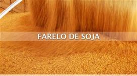 FARELO DE SOJA