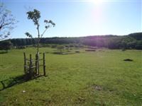 310 hectares a venda