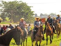 Arrendo pasto para animais em Rio Preto