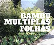 Cerca Viva e Paisagismo com Bambu Multiplex - DIRETO DO PRODUTOR