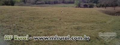 Fazenda de 63 hecatres no municipio de Trindade-GO cod.196