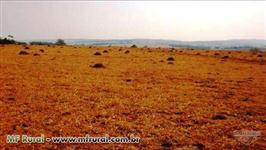 Fazenda de 484 hectares na região de Mossâmedes-GO cod.242