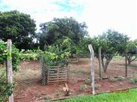 Fazenda de 7.5 alq + 5 alq. ao lado município de Adelandia