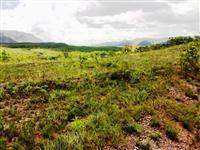 Fazenda de 425 alq.(2.057 há.) na região de Niquelândia-GO cod.404
