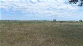 Fazenda de 325 alq.(1.573 há.)  Dueré-TO