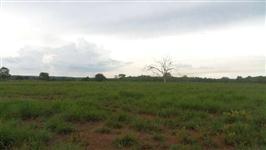 Fazenda de 426 alq.(2.062 ha.) Marianópolis To