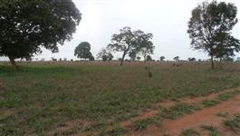 Fazenda 186 alq. (900 ha.) na regiao de Jussara - Go