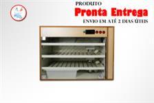 Chocadeira PID  Automatica BIVOLT (330 ovos)-ÚNICA DO MFRURAL