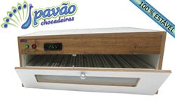PV71 Chocadeira automática (70 ovos) com PID 110 Volts