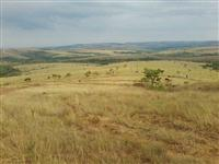 Bela fazenda proxima à Brasilia