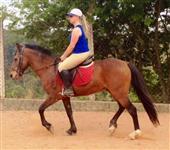 Cavalo para crianças