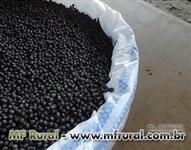 Pimentas do reino, rosa, Jamaica, tonka bean direto produtor