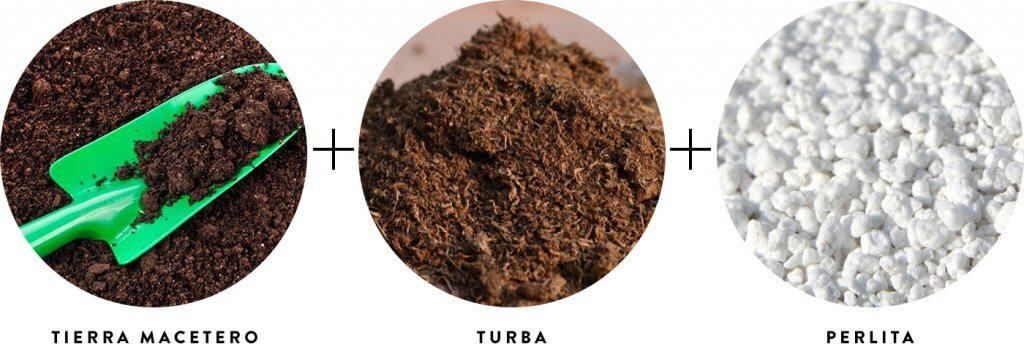 Tierra + Turba + Perlita