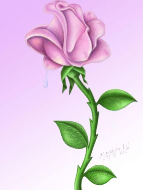 Poster Flor rosa