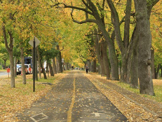 Poster Outono