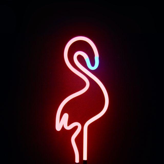 Poster Flamingo Neon