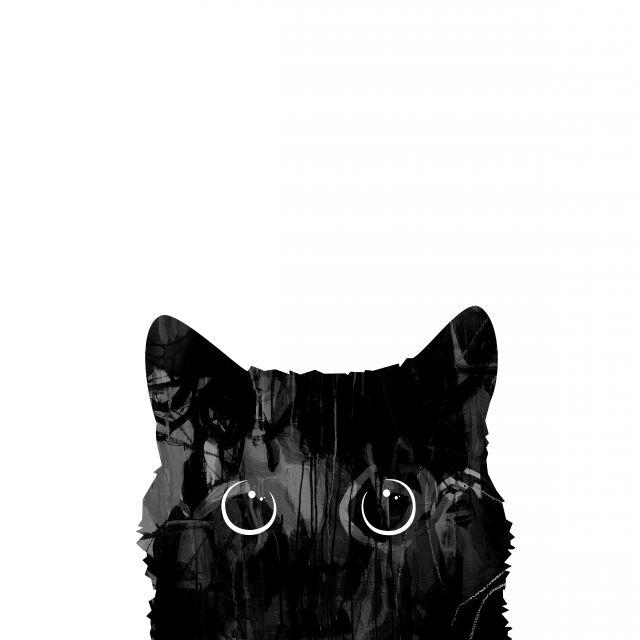 Poster Gato Curioso I