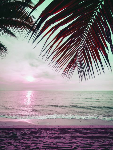 Poster Praia e Palmeiras   mar