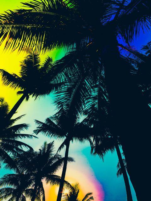 Poster Espaço tropical II
