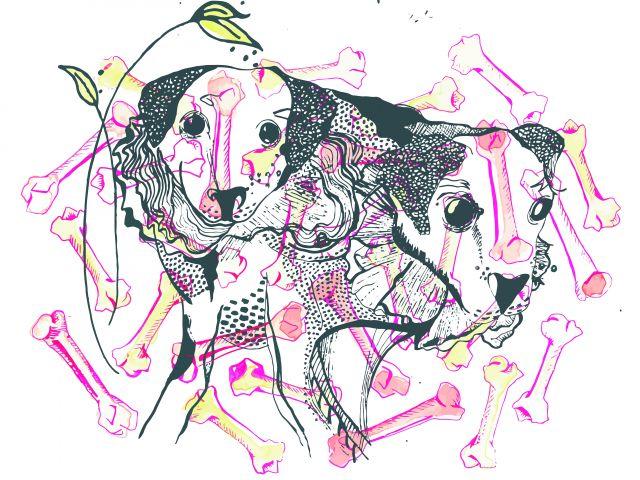 Poster Perritos   cachorro cachorros cão