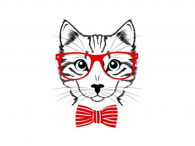 Poster Gato nerd